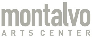 New Montalvo Gray Logo medium size1992
